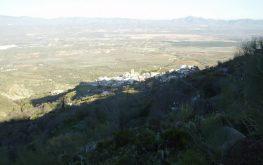 sierraalhamilla-263x165